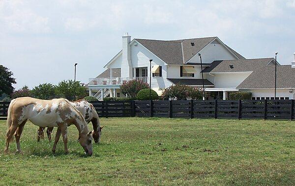 Southfork Ranch Dallas Tripomatic