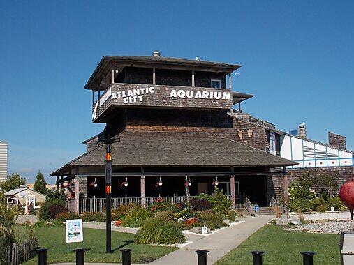 Atlantic city aquarium atlantic city sygic travel Atlantic city aquarium hours