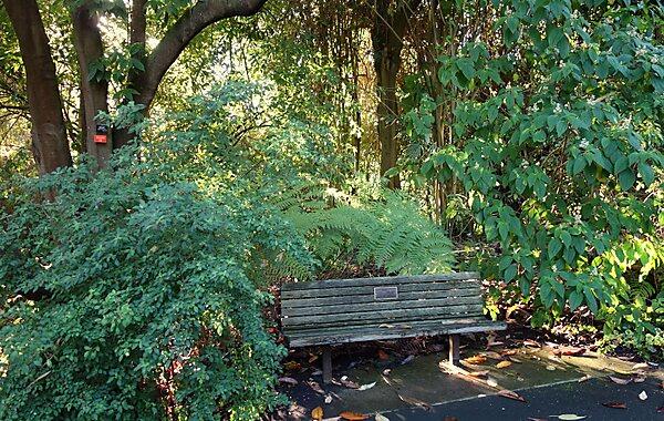 San Francisco Botanical Garden San Francisco Sygic Travel